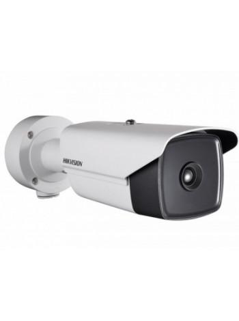 IP-камера видеонаблюдения тепловизионная в стандартном исполнении Hikvision DS-2TD2136-10