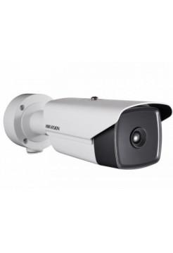IP-камера видеонаблюдения тепловизионная в стандартном исполнении Hikvision DS-2TD2166-15